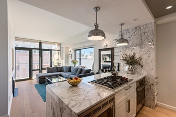 Stunning Sun-drenched One Bedroom Dumbo Condo